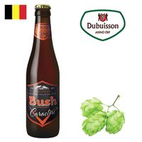 Bush Ambrée 330ml